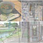 【松戸散策③】松戸宿、坂川のほとりを散策。豆腐屋、染物屋…街の中に川が溶け込む景色