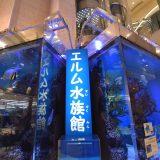 「ユアエルム八千代台店」ユアエルム第一号店!昭和なショッピングセンターには水族館も! -八千代台⑸