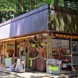 昭和で時が止まった「売店」。鹿島神宮境内にあるお土産屋に惚れ惚れ -鹿島⑵