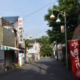 「花見川ニューショッピング」千葉市花見川団地にある商店街でレトロな街灯を辿る